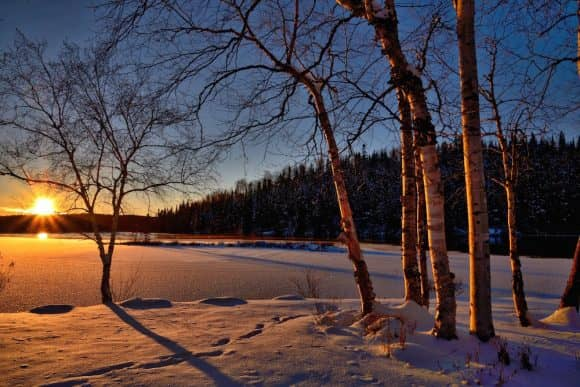 Sun rises over a snowy lake behind trees