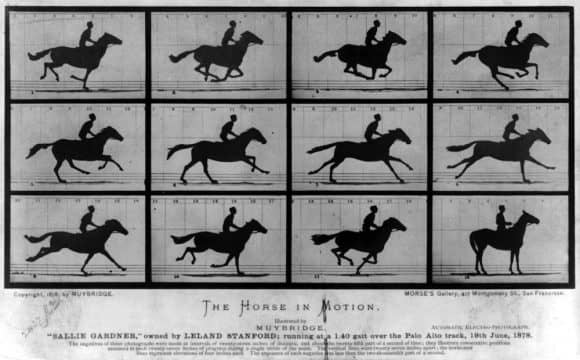 Stills of Eadweard Muybridge's 'Horse in Motion'
