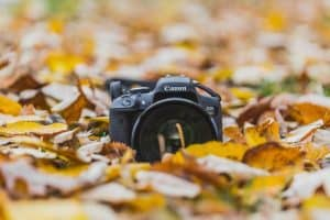 A DSLR camera sitting on a bed of autumn leaves.