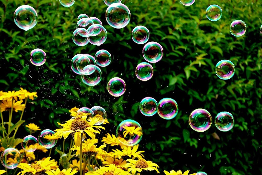 Bubbles and sunflowers on a summer's day.